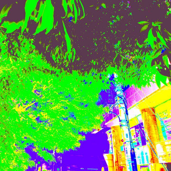 Reality on Pixel #CL0001160 - Novo Weimar