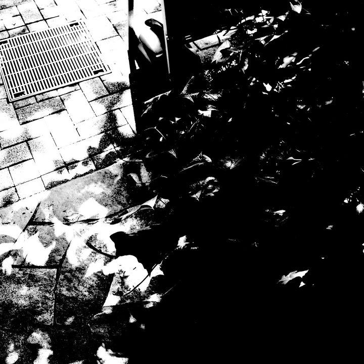 Reality on Pixel #BW0001163 - Novo Weimar
