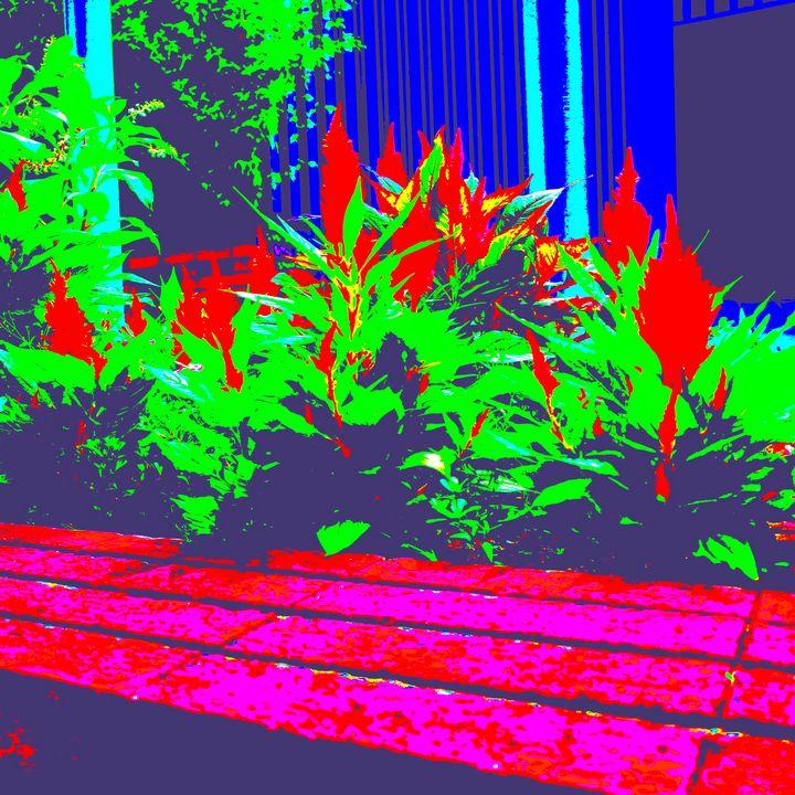 Reality on Pixel #CL0001178 - Novo Weimar