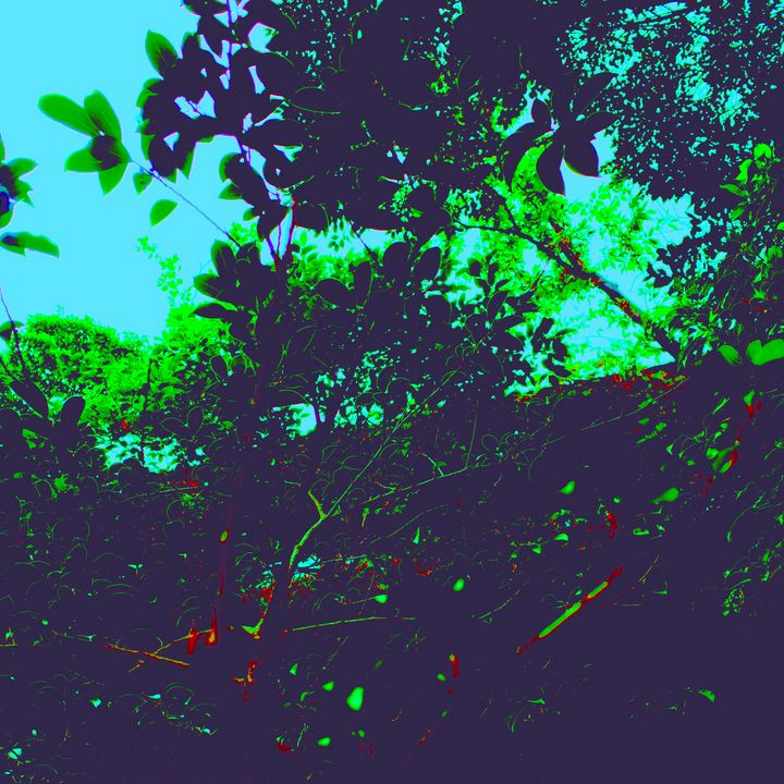 Reality on Pixel #CL0001181 - Novo Weimar
