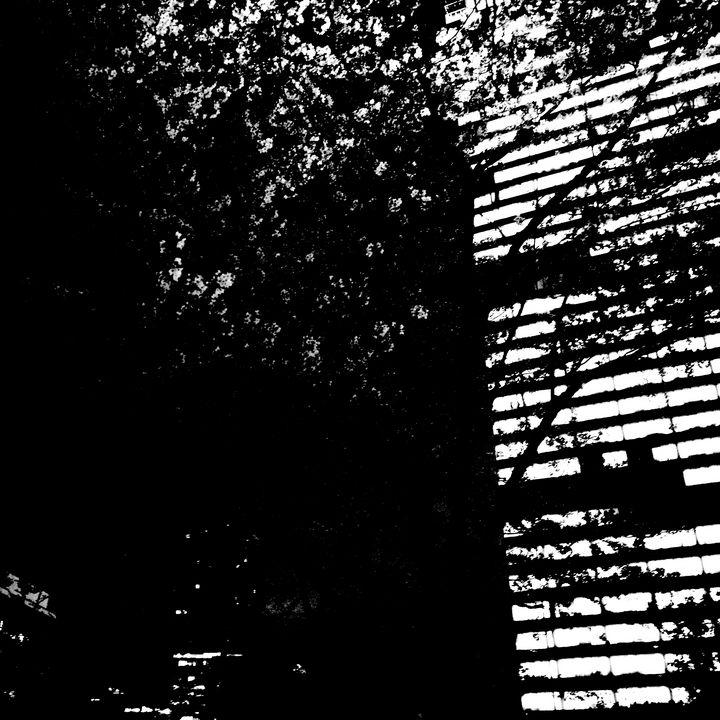 Reality on Pixel #BW0001179 - Novo Weimar