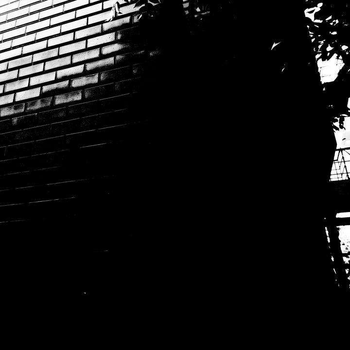 Reality on Pixel #BW0001183 - Novo Weimar