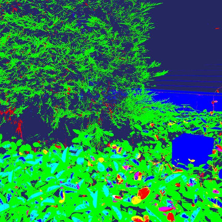 Reality on Pixel #CL0001184 - Novo Weimar