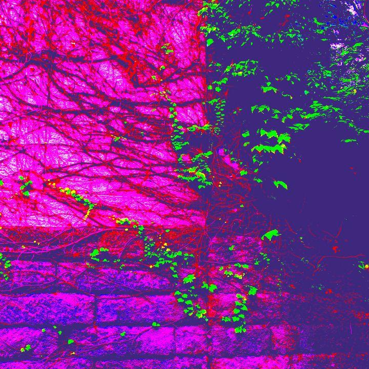 Reality on Pixel #CL0001217 - Novo Weimar
