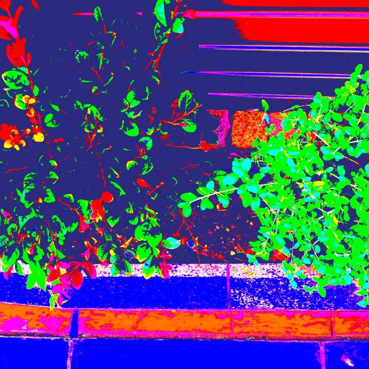 Reality on Pixel #CL0001220 - Novo Weimar