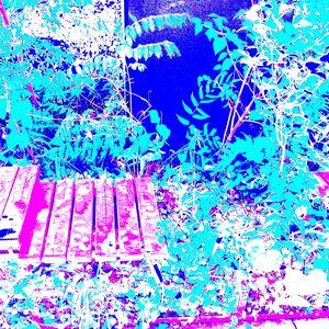 Reality on Pixel #CL0000121 - Novo Weimar