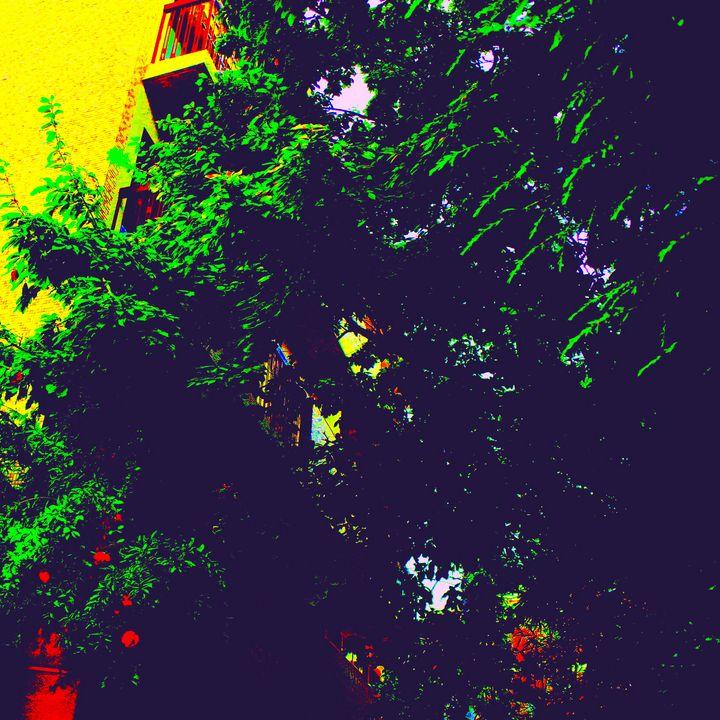 Reality on Pixel #CL0001342 - Novo Weimar