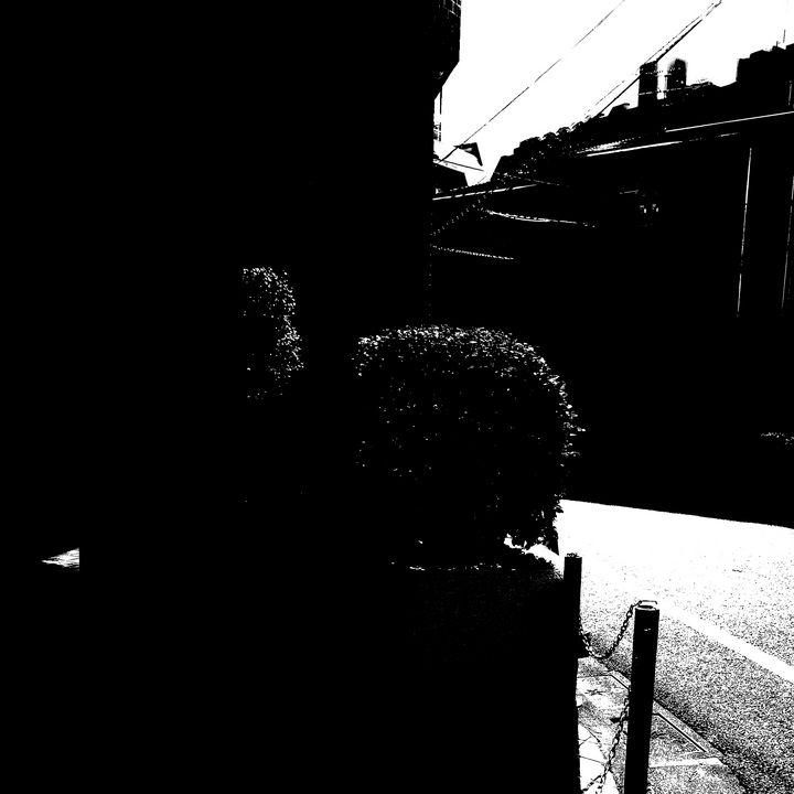 Reality on Pixel #BW0001522 - Novo Weimar