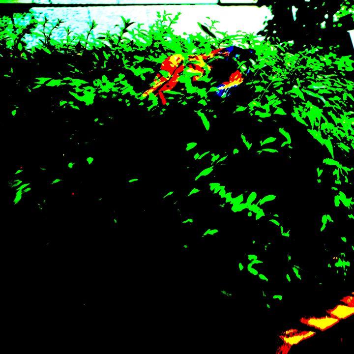 Reality on Pixel CL0002294 - Novo Weimar