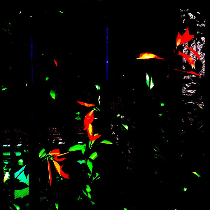 Reality on Pixel CL0002315 - Novo Weimar