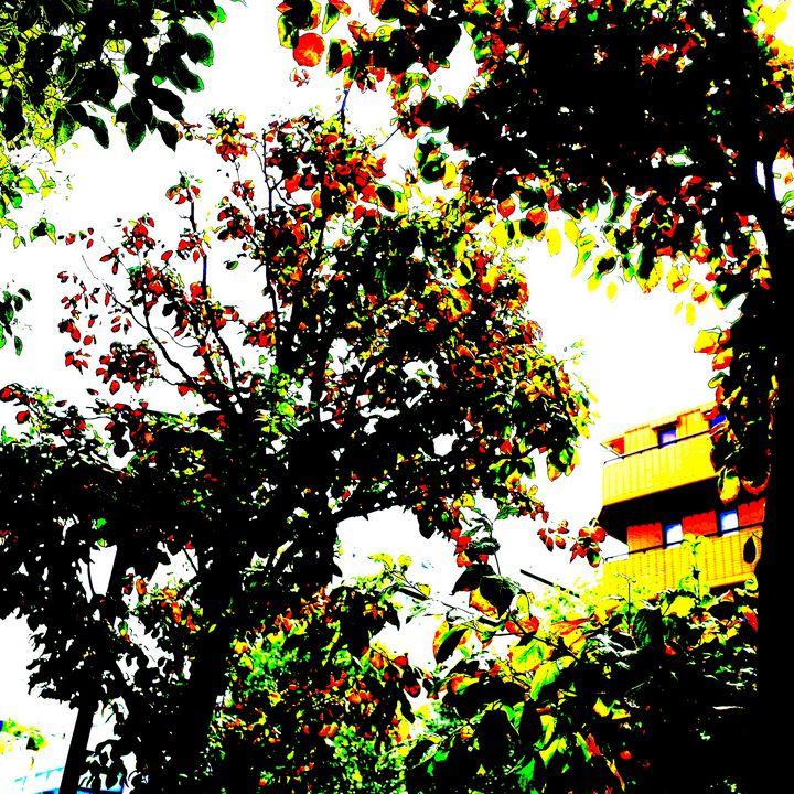 Reality on Pixel CL0002321 - Novo Weimar