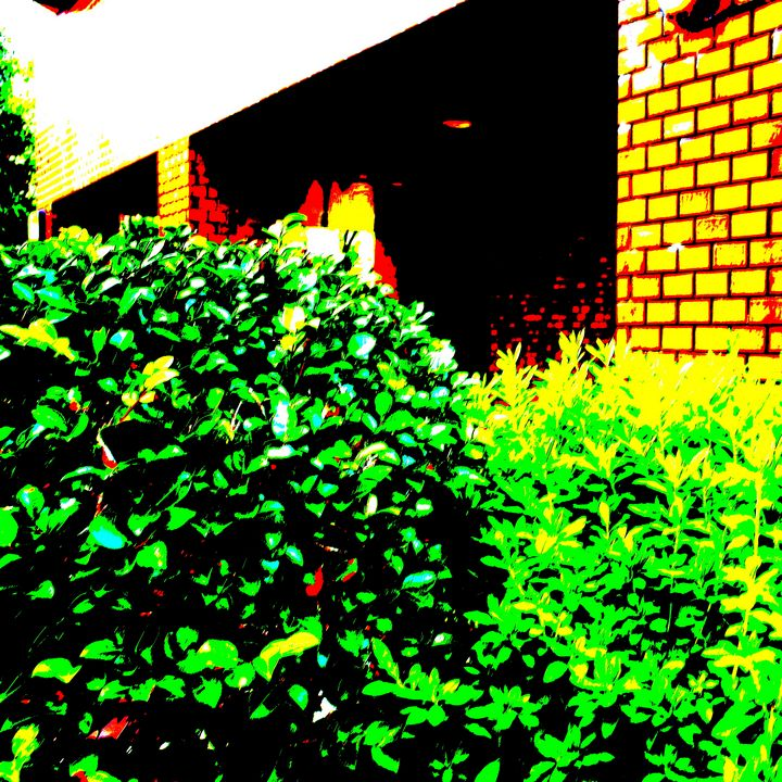 Reality on Pixel CL0002406 - Novo Weimar