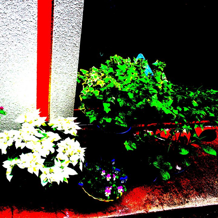 Reality on Pixel CL0002479 - Novo Weimar