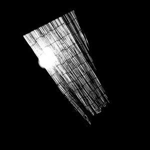 Reality on Pixel #BW0000243