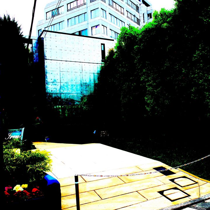 Reality on Pixel CL0003014 - Novo Weimar
