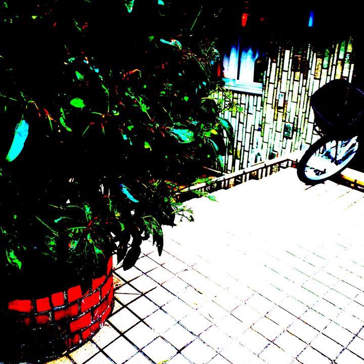 Reality on Pixel CL0003015 - Novo Weimar
