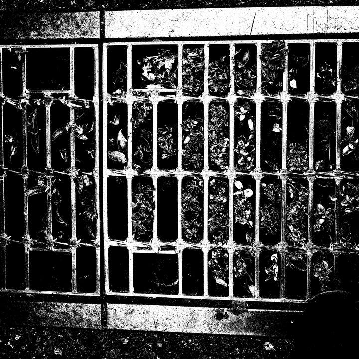 Reality on Pixel #BW0000297 - Novo Weimar