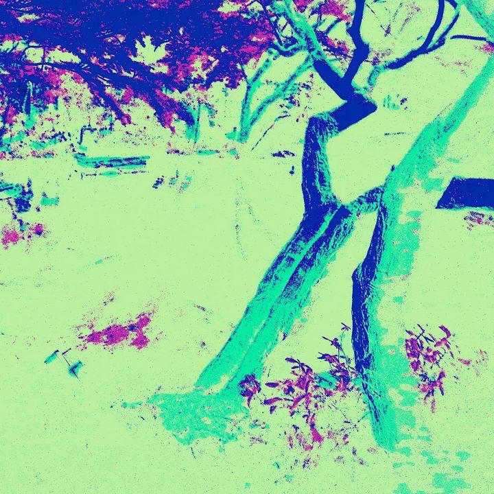 Reality on Pixel #CL0000337 - Novo Weimar