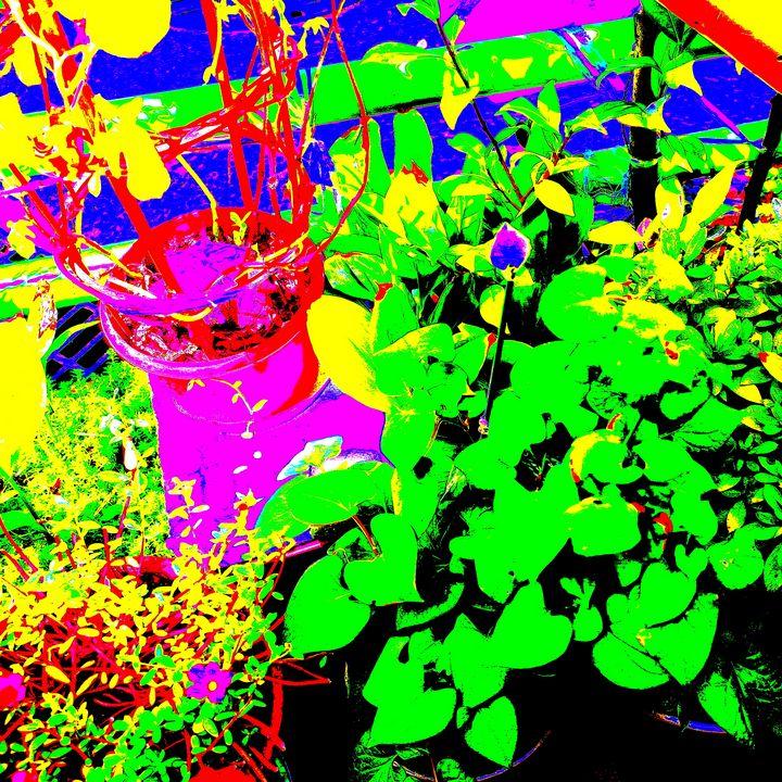 Reality on Pixel #CL0000338 - Novo Weimar
