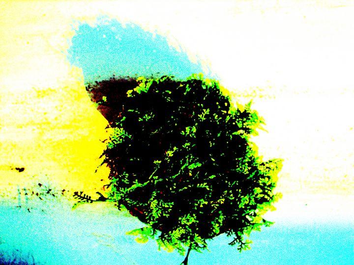 tiny bird-like tiny tree - Novo Weimar