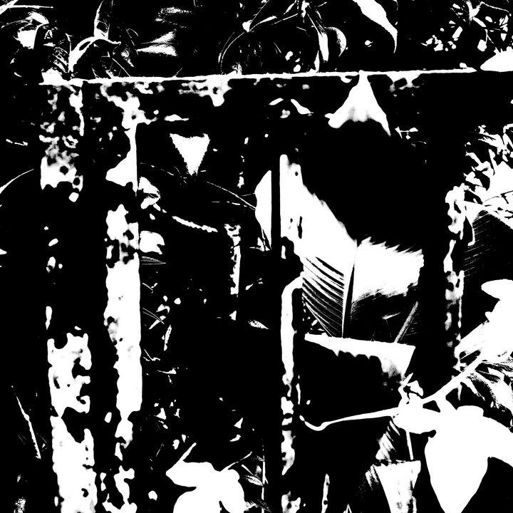 Reality on Pixel #BW0000402 - Novo Weimar