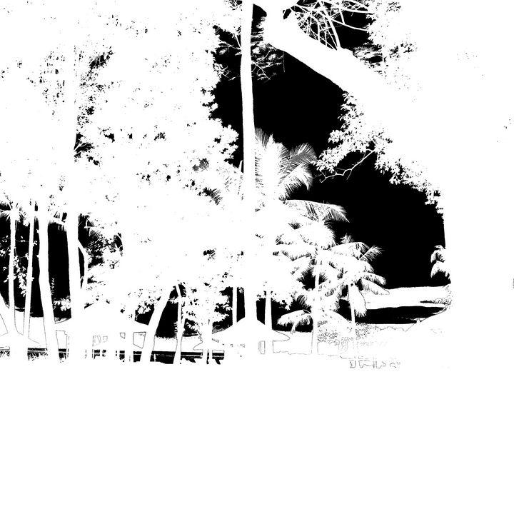 Reality on Pixel #BW0000549 - Novo Weimar