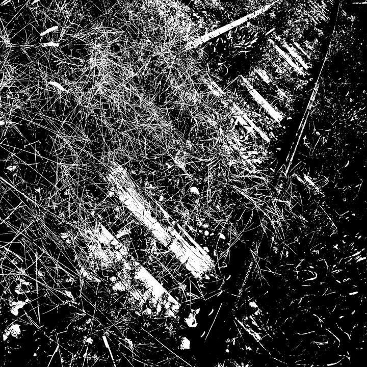Reality on Pixel #BW0000561 - Novo Weimar