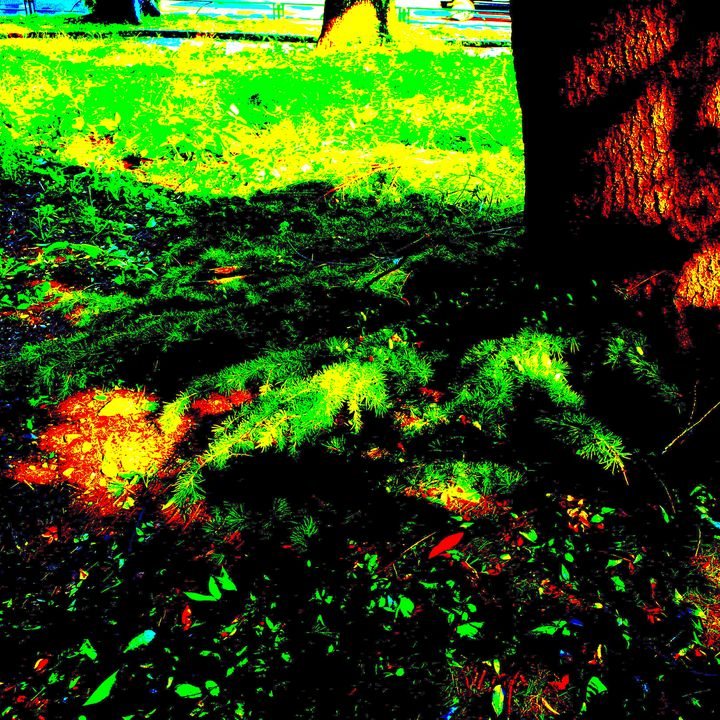 Reality on Pixel #CL0000518 - Novo Weimar