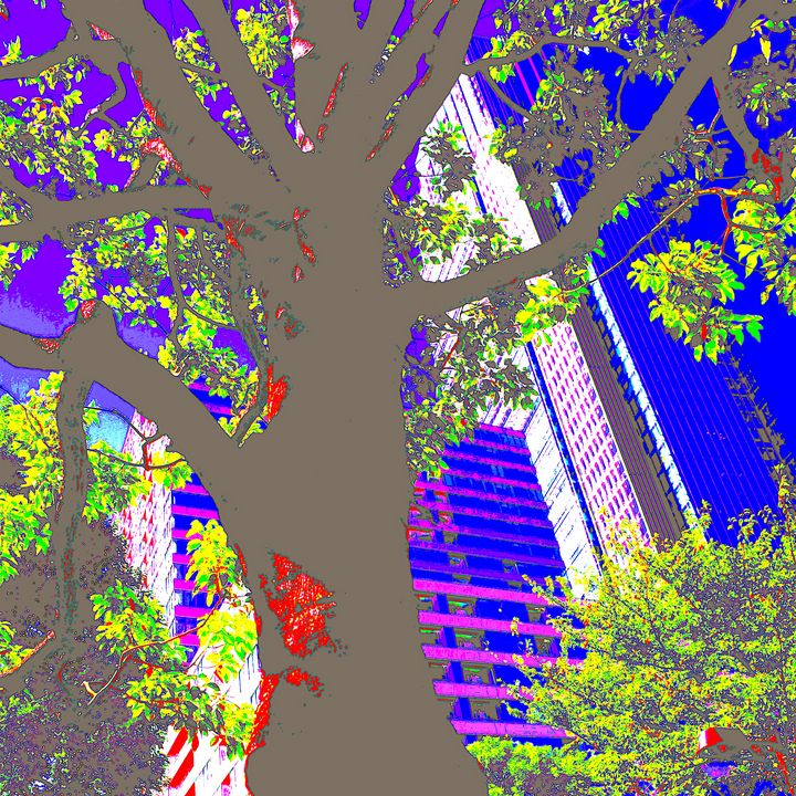 Reality on Pixel #CL0000545 - Novo Weimar