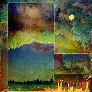 Segmented landscape.