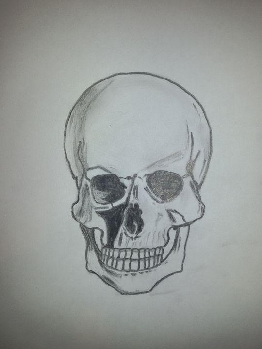 Front Skull - Alyca