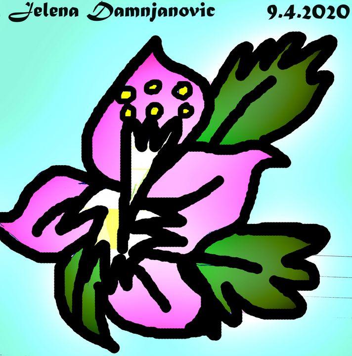 Flower - Jelena Damnjanovic