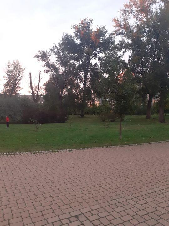 Park - Jelena Damnjanovic