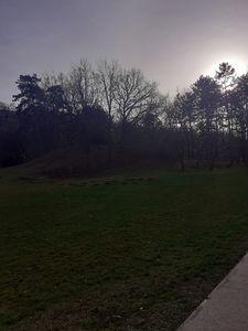 Kamenicki park