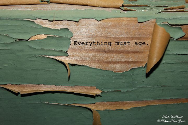 Everything Must Age - Peeling Paint - Need-A-Photo?
