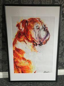 Bruno framed example