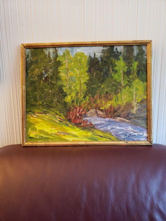 Babbling Creek Grand Mesa Colorado - Wilda Fortune