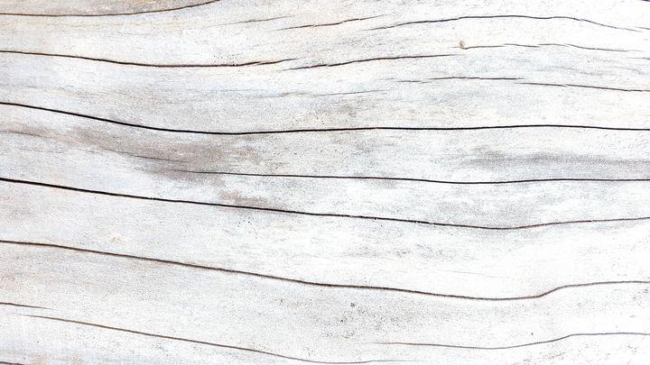 The White Tree - BlockedGravity