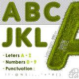 3D Render of Green Grass Alphabet