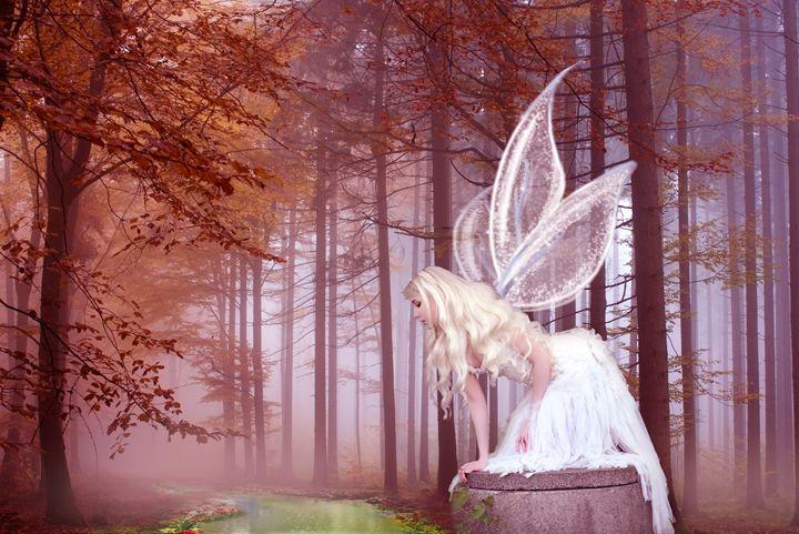 Fairy On The Lake - SharkyLanne