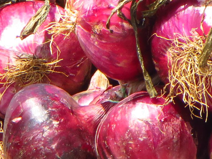 Big Red Onions - Travellin' Light: photography, Monica Melissano