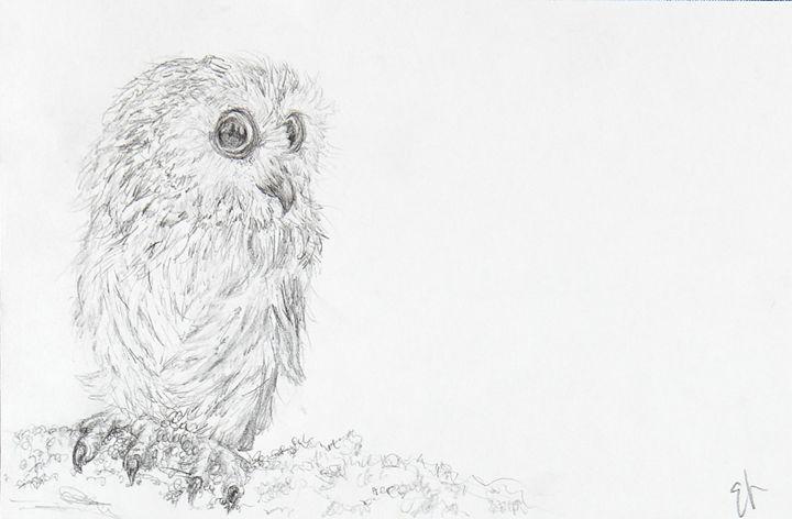 Baby Owl - Emma's Art