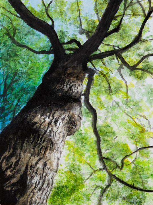 From Beneath a Tree - Emma's Art