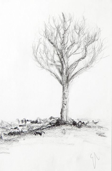 Tree Sketch - Emma's Art
