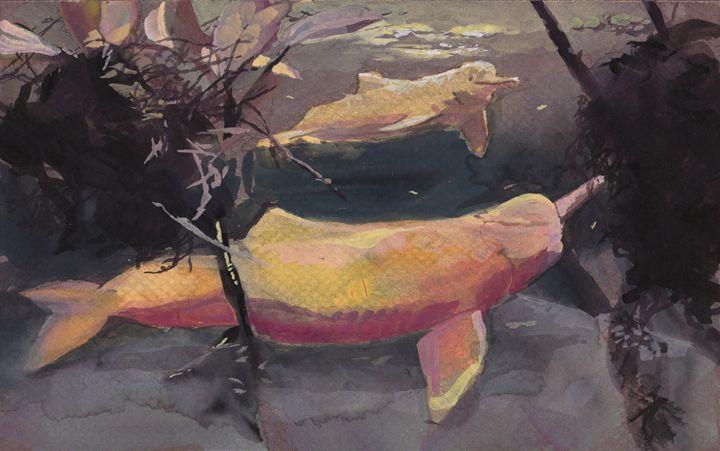 Pink dolphins - Romeroleo