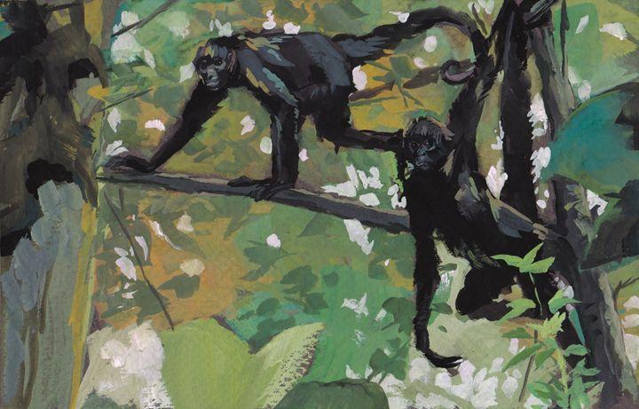 Spider Monkeys - Romeroleo