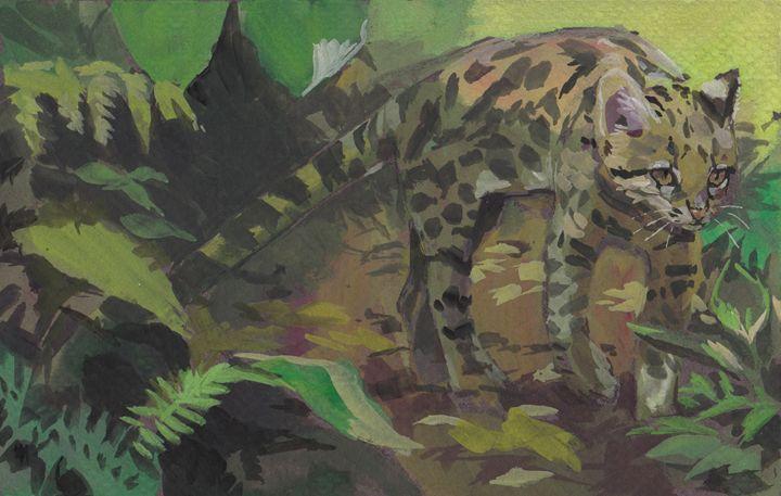 Tigrillo - Romeroleo