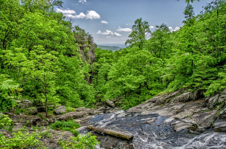 Wilderness - New View