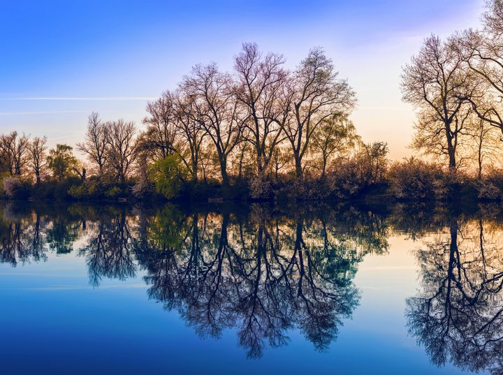 Reflection - New View