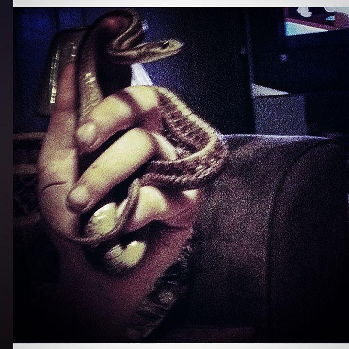 Hand & Serpent - J.M. Downing